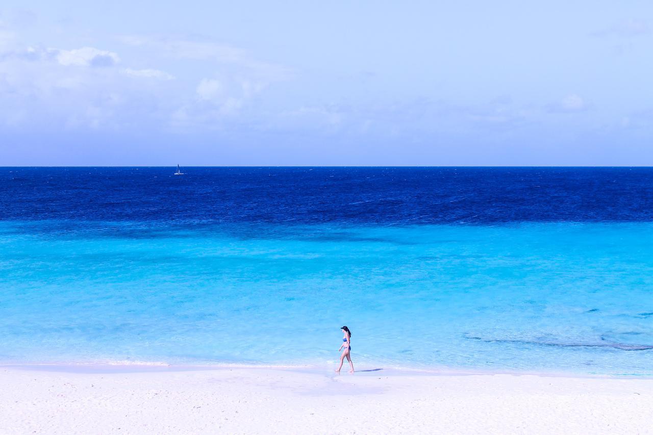 The deserted island