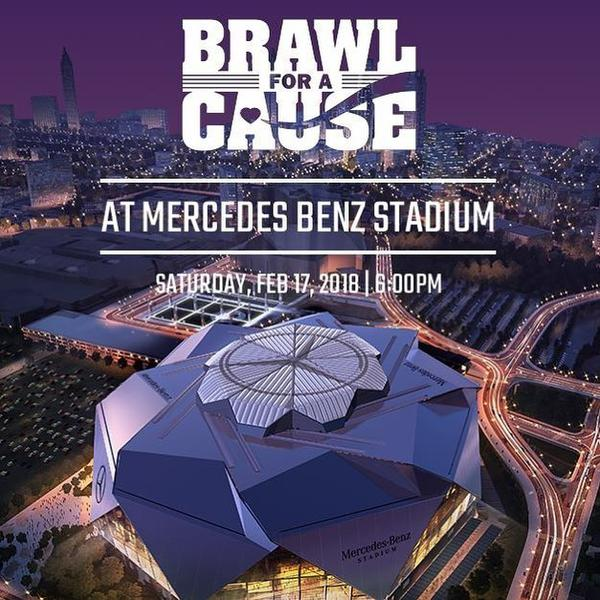 Brawl for a Cause
