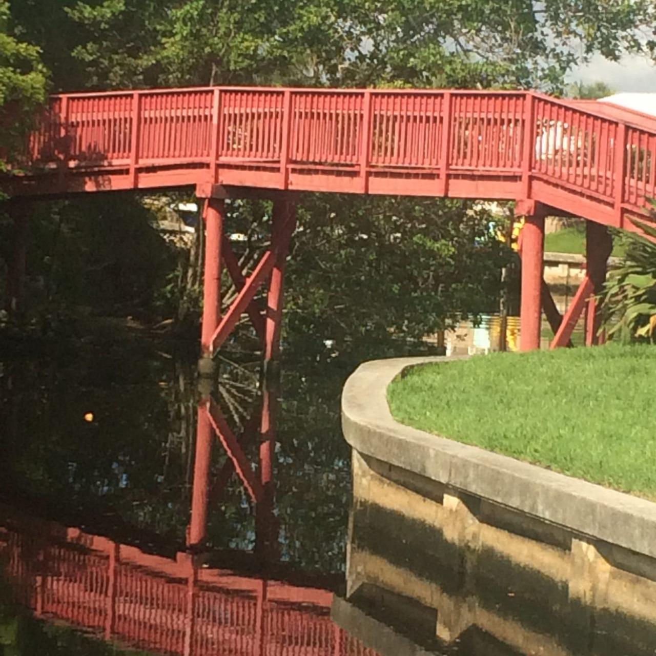 camino bridge scaled