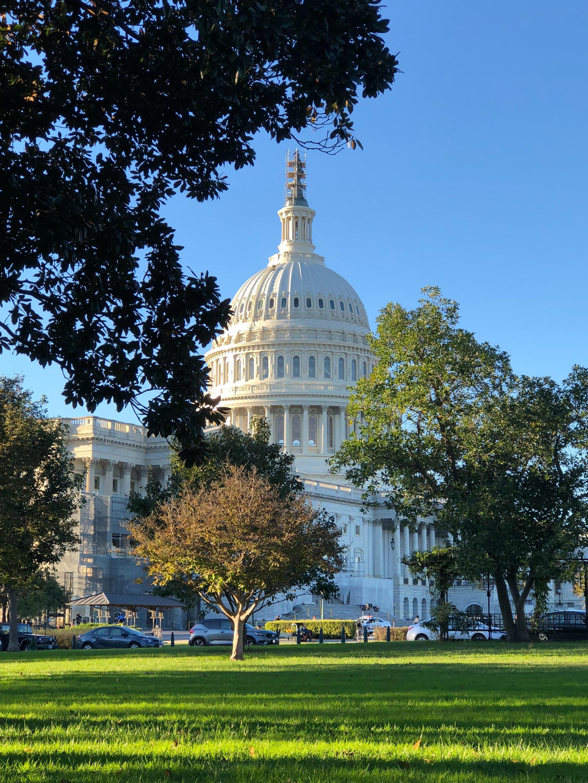 The Capitol Building, Washington DC.