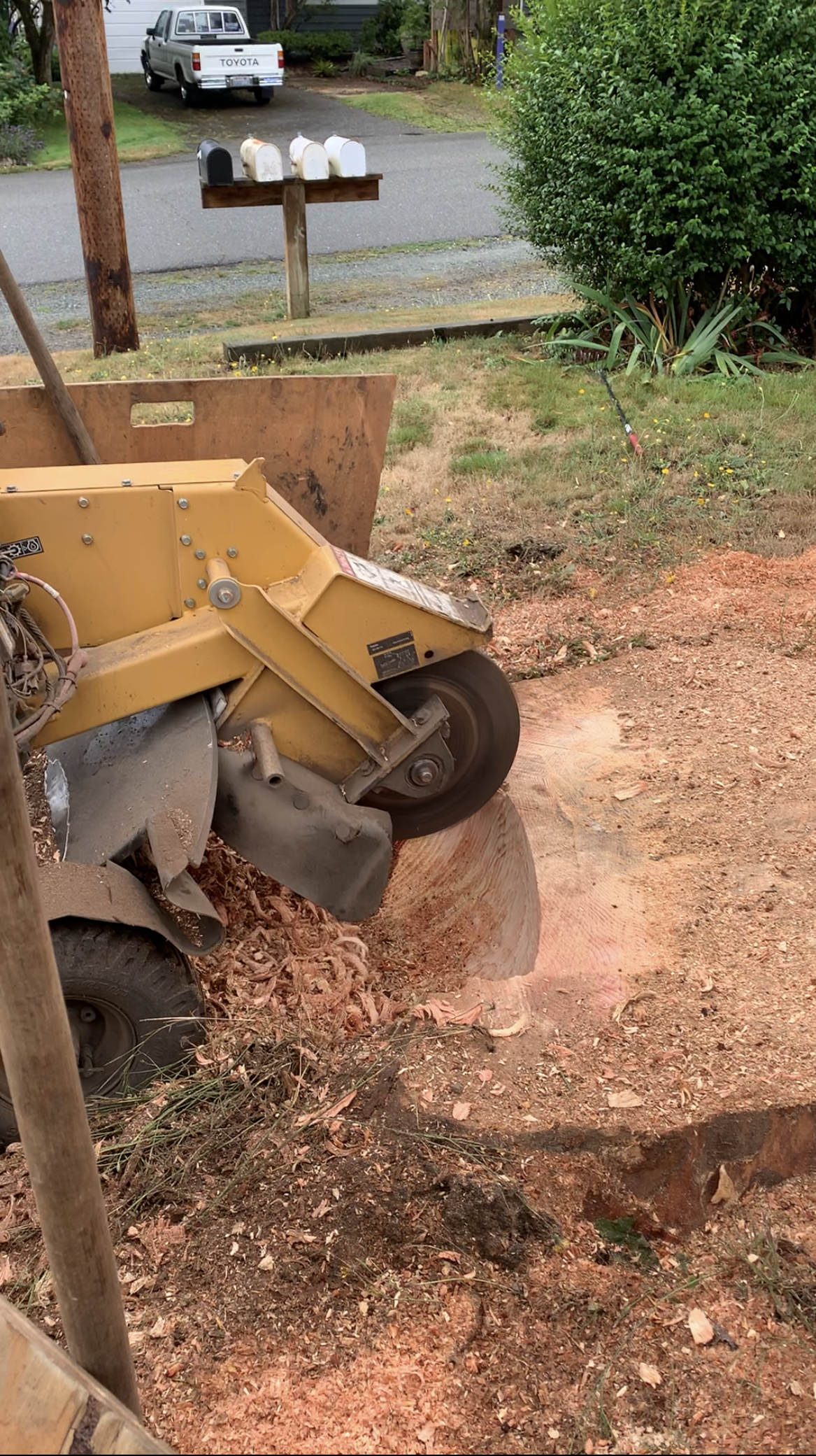 standard stump grinder performing a stump removal