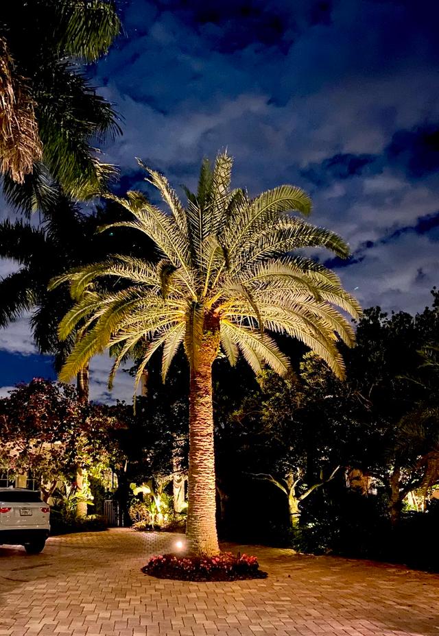 down lighting west palm beach