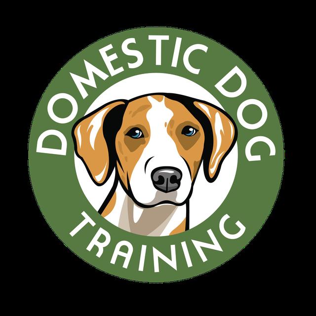 ddt-logo1.png