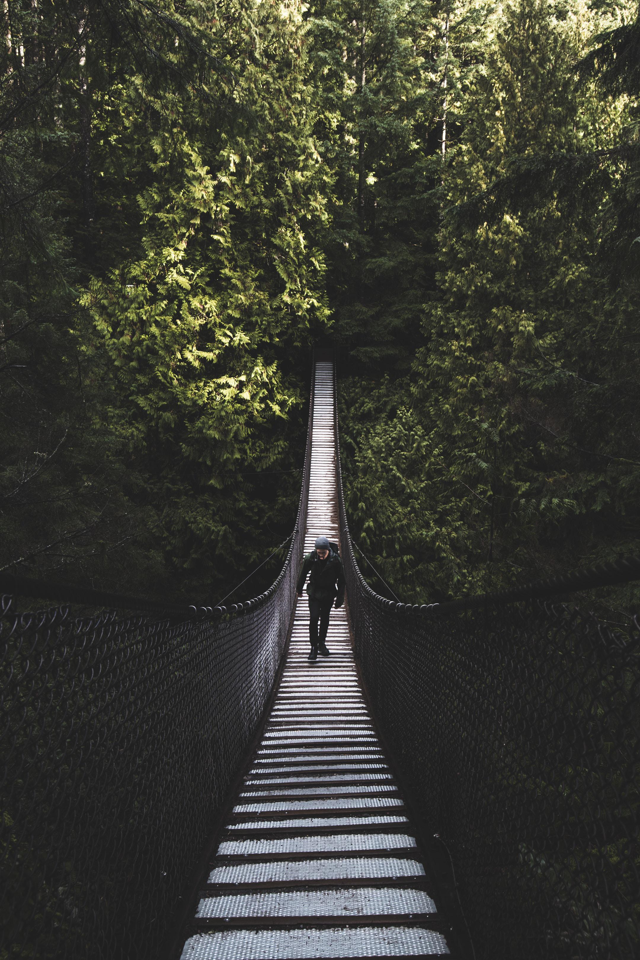 man walking on wooden bridge in the forest