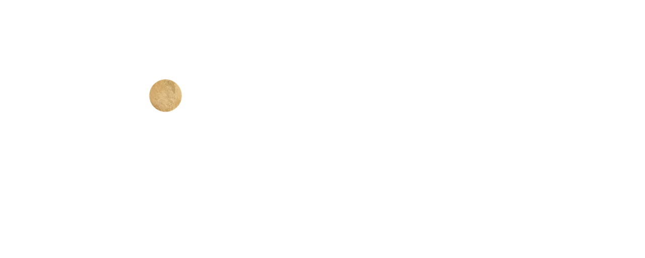 29intentions_mainlogo_transparentbackground.png