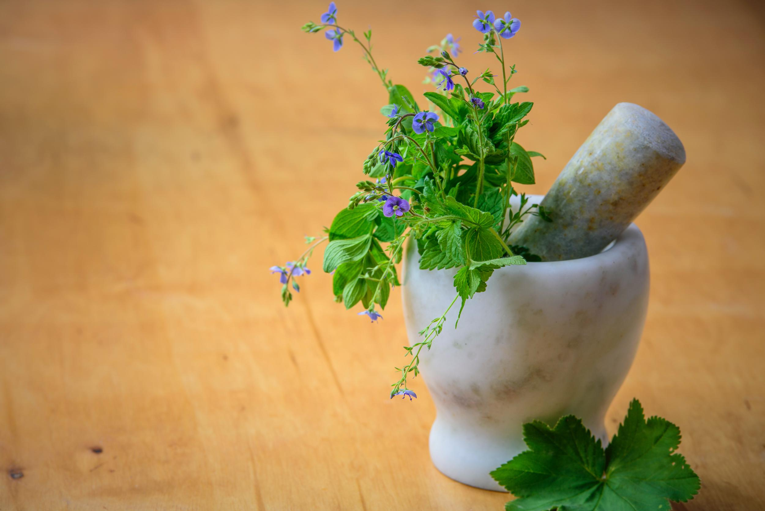 herbs in a mortar and pestle