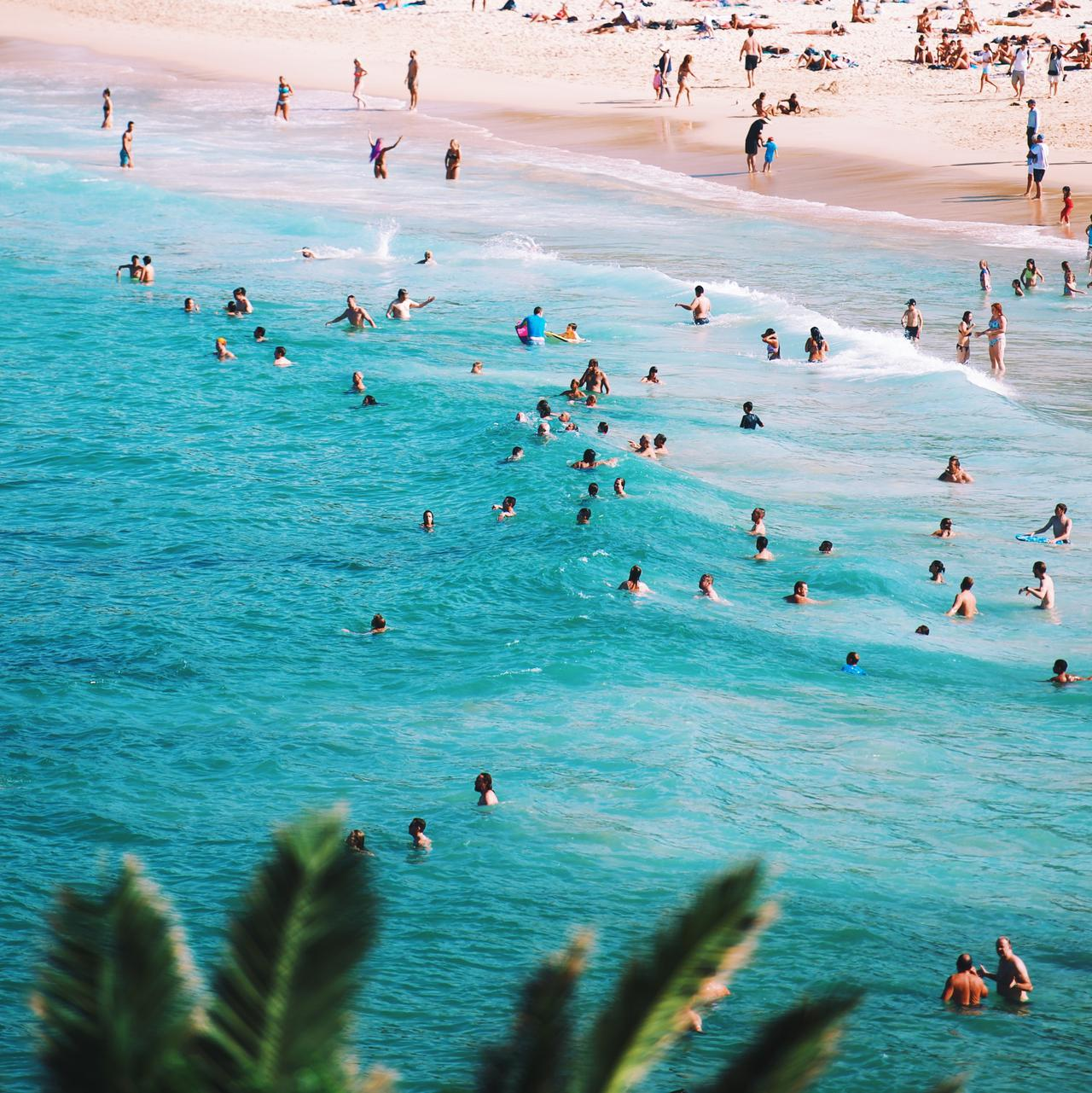 people swimming in the beach