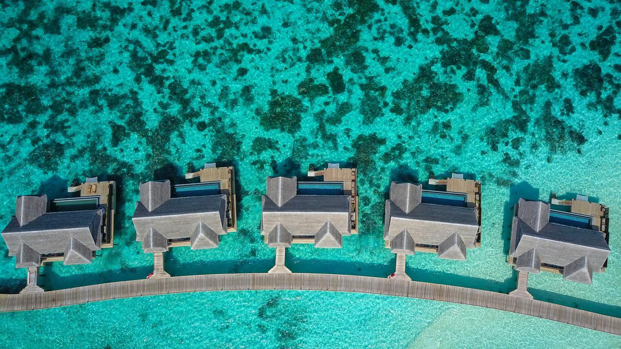 Maldives Honeymoon<br/>