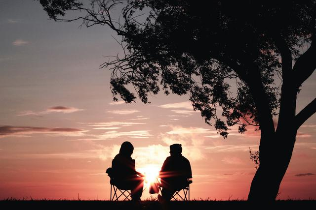 A pink sunset with two retirees sitting in an open field under a large tree.