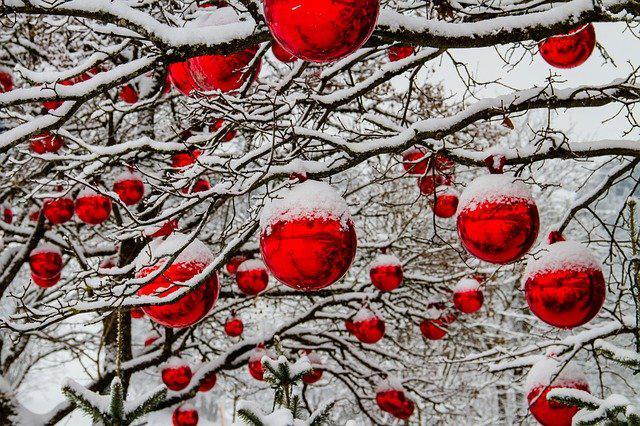 christmas-3009720_640.jpg