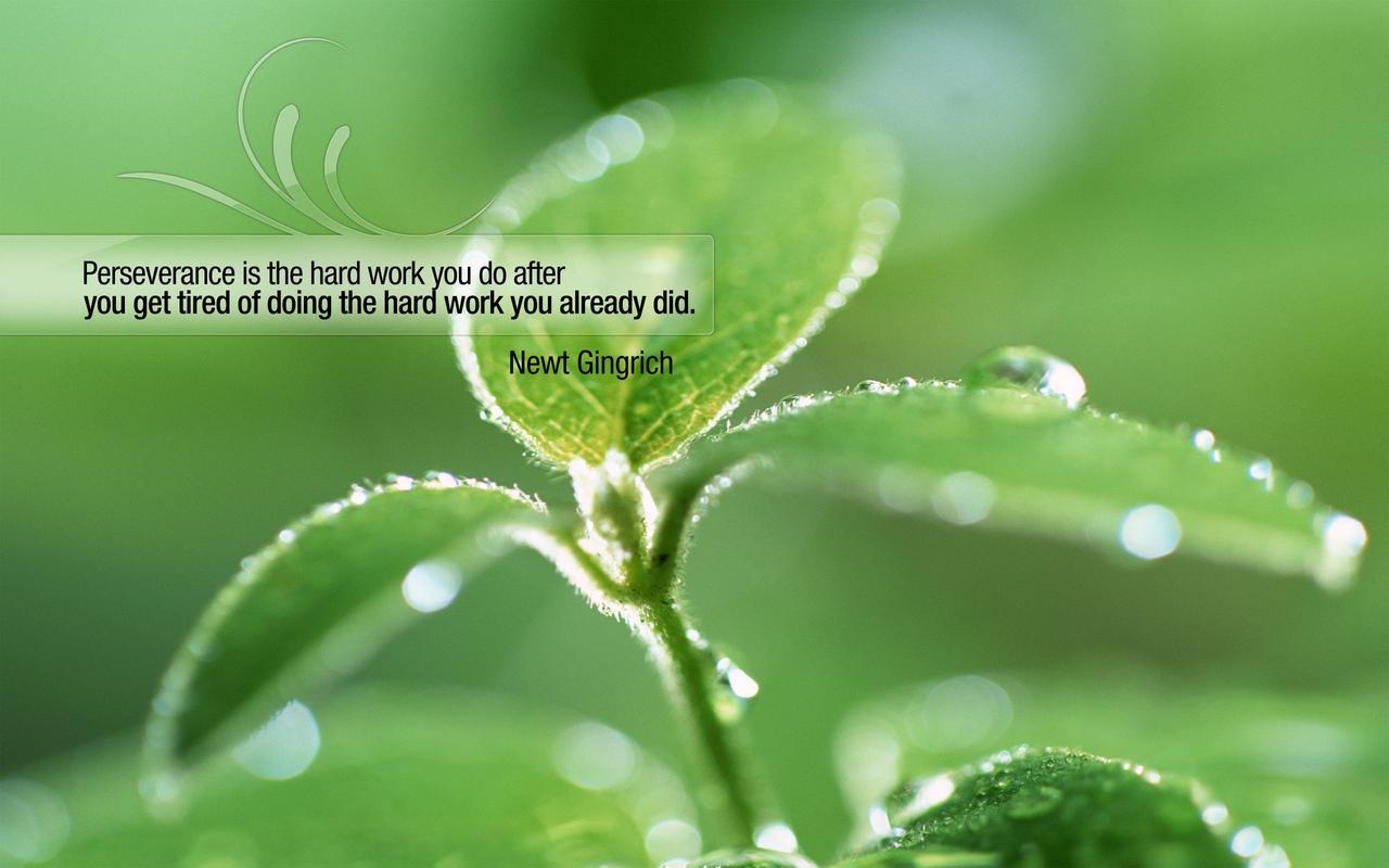 perseverance quote.jpg