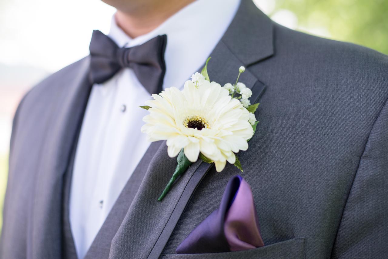 blur-bow-tie-close-up-1712155.jpg