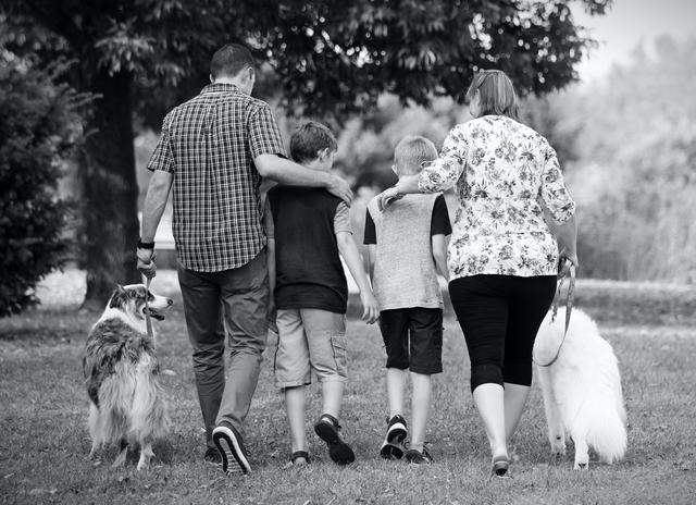A family walks with their 2 kids and 2 dogs.