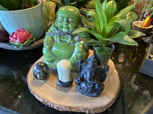 condo 20 green buddha.jpeg