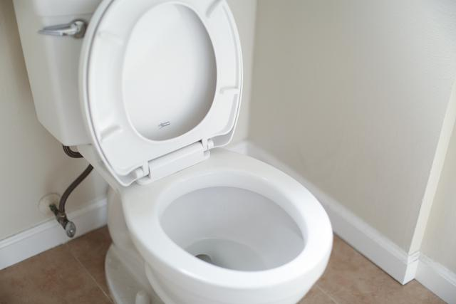 This is a picture of a toilet needing a toilet repair.