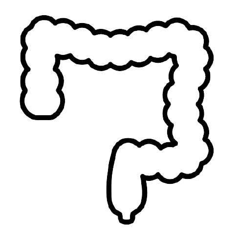 Image of an icon of a colon for using radiology learning software for screening and diagnosis.
