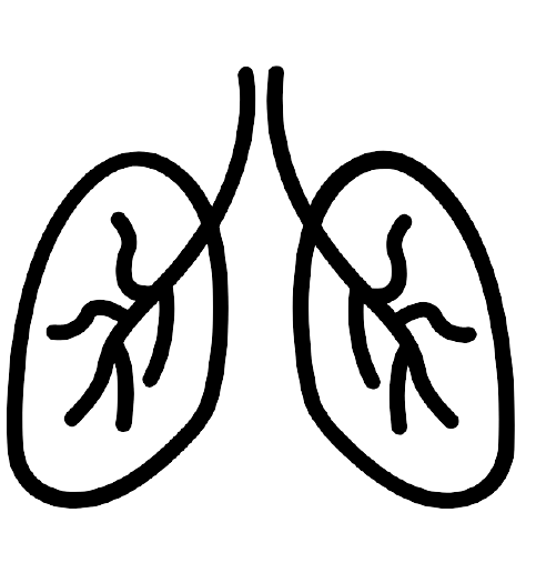 Image of an icon of lungs for low radiation CT scan lung cancer screening.