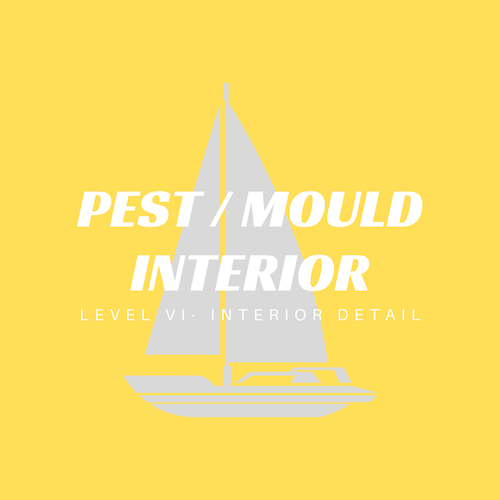 Pest and mold control techniques are applied including and ozone treatment at this level. Additional fees for loose items begins at this level.