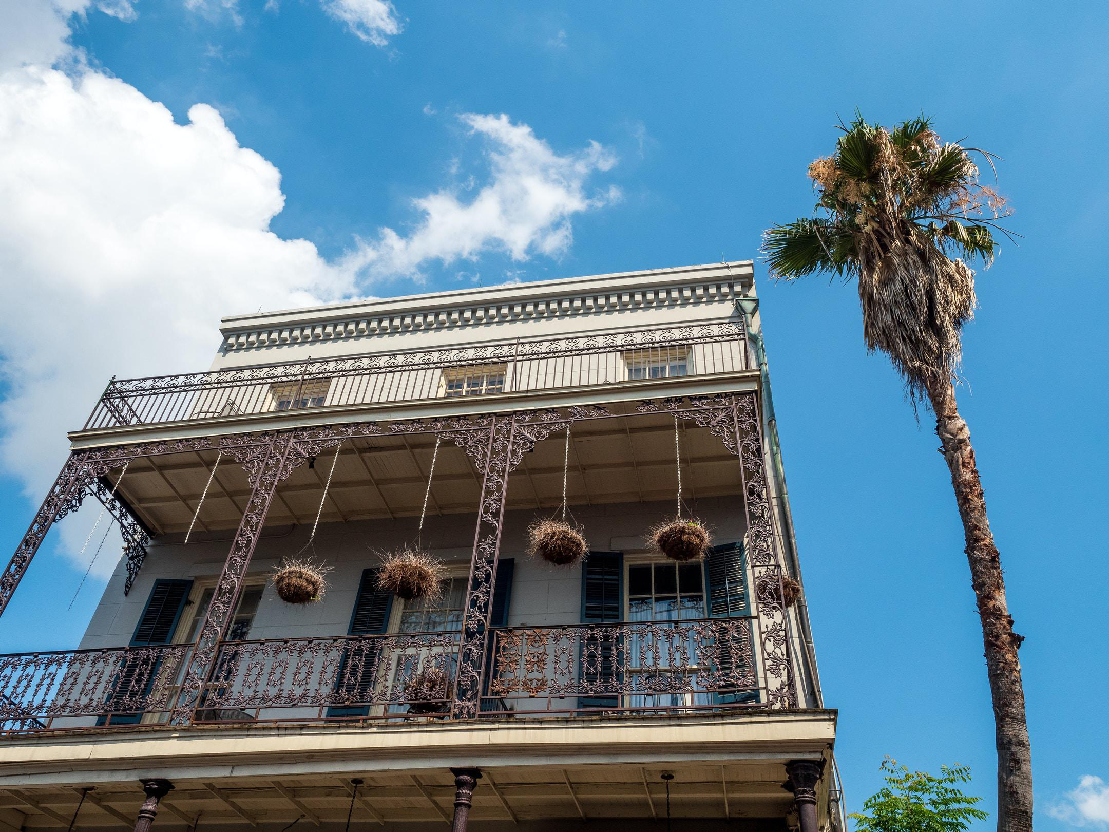 Creole townhouse balcony and hanging baskets with palm tree