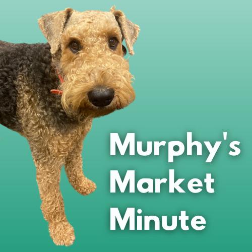 murphy's market logo.png