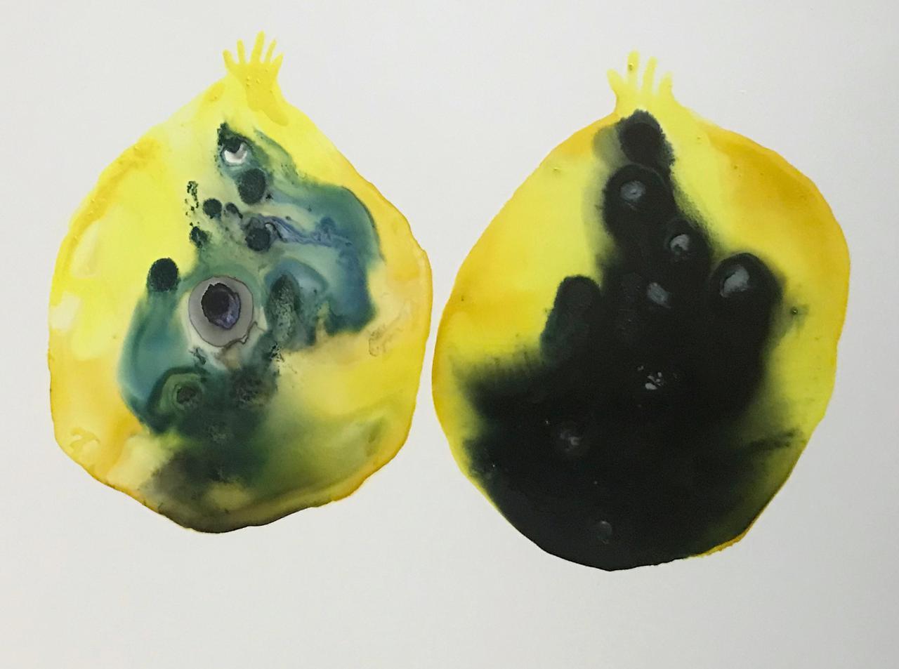 pomegranate5.jpg