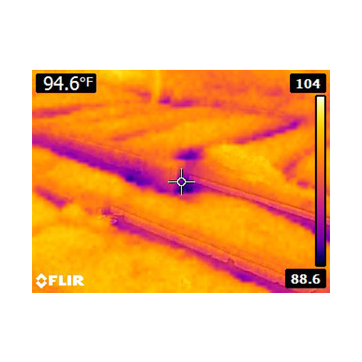 An infrared image of a home.