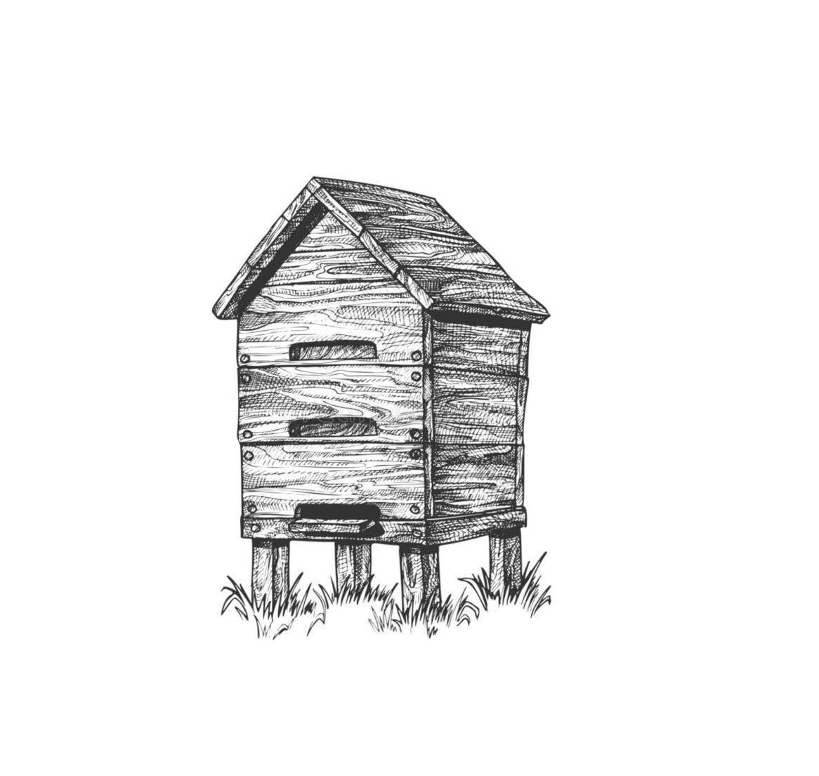 beehive sketch1.jpg