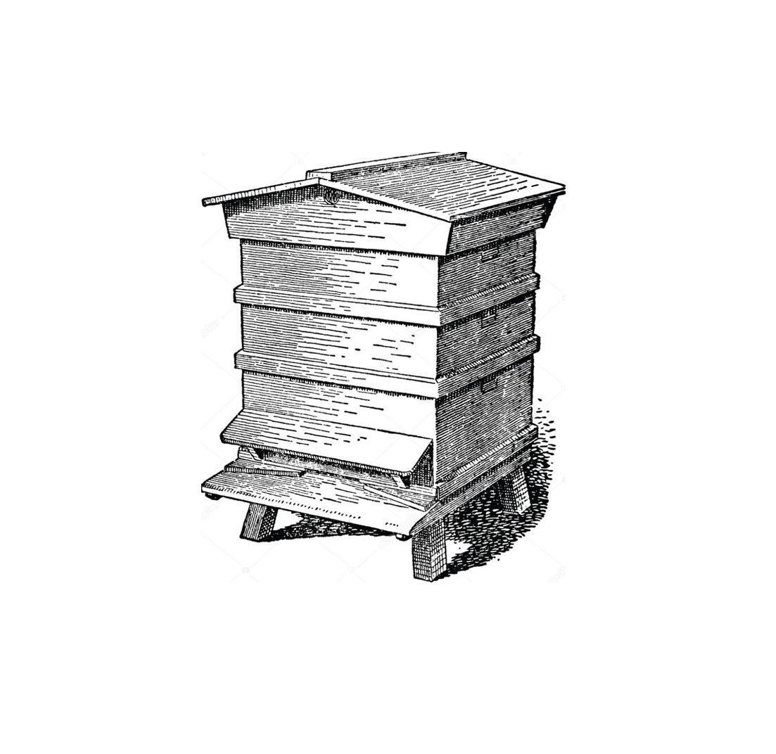 beehive sketch3.jpg