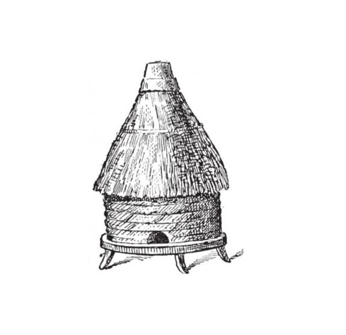 beehive sketch4.jpg