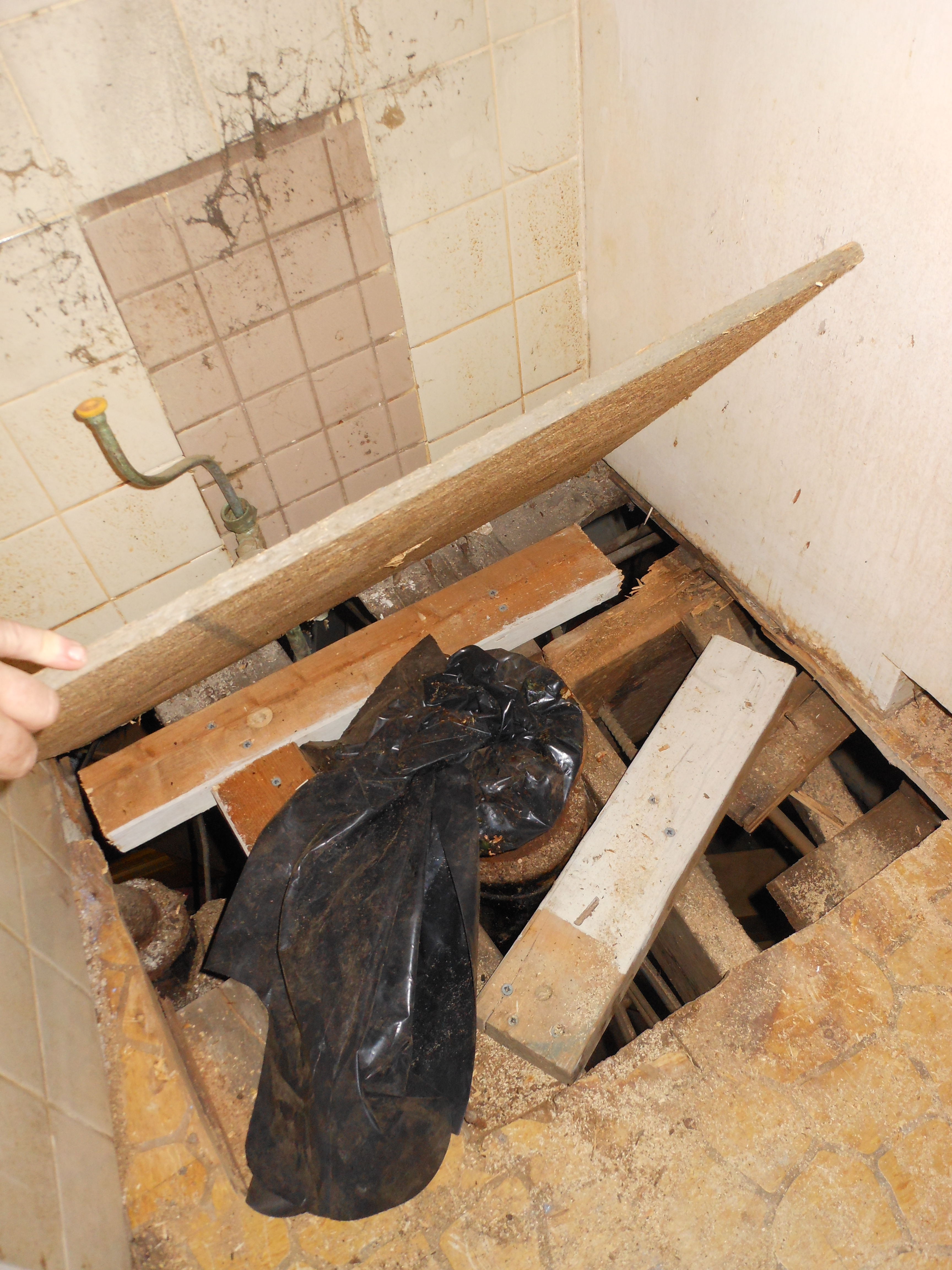 Bathroom Gutting and Floor Replacement