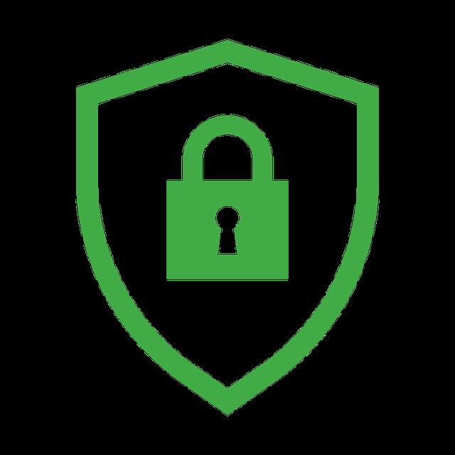 noun_security_957678.png
