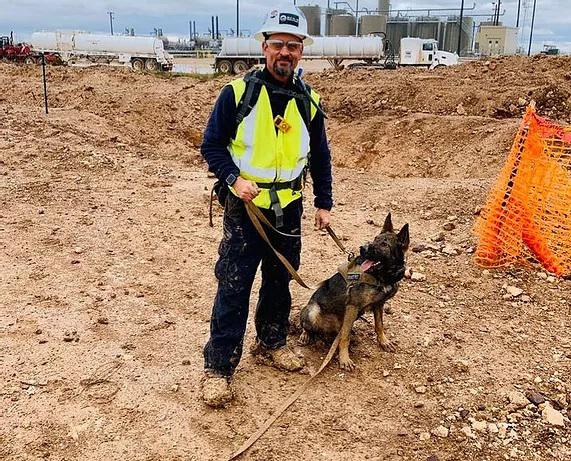 k9 narcotic and explosives detection