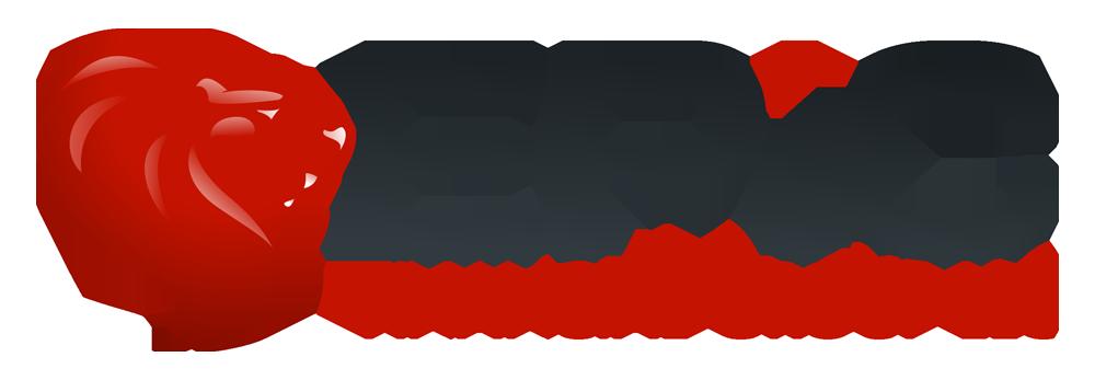 EPICFinancC12a-A01bT07a-Z.png