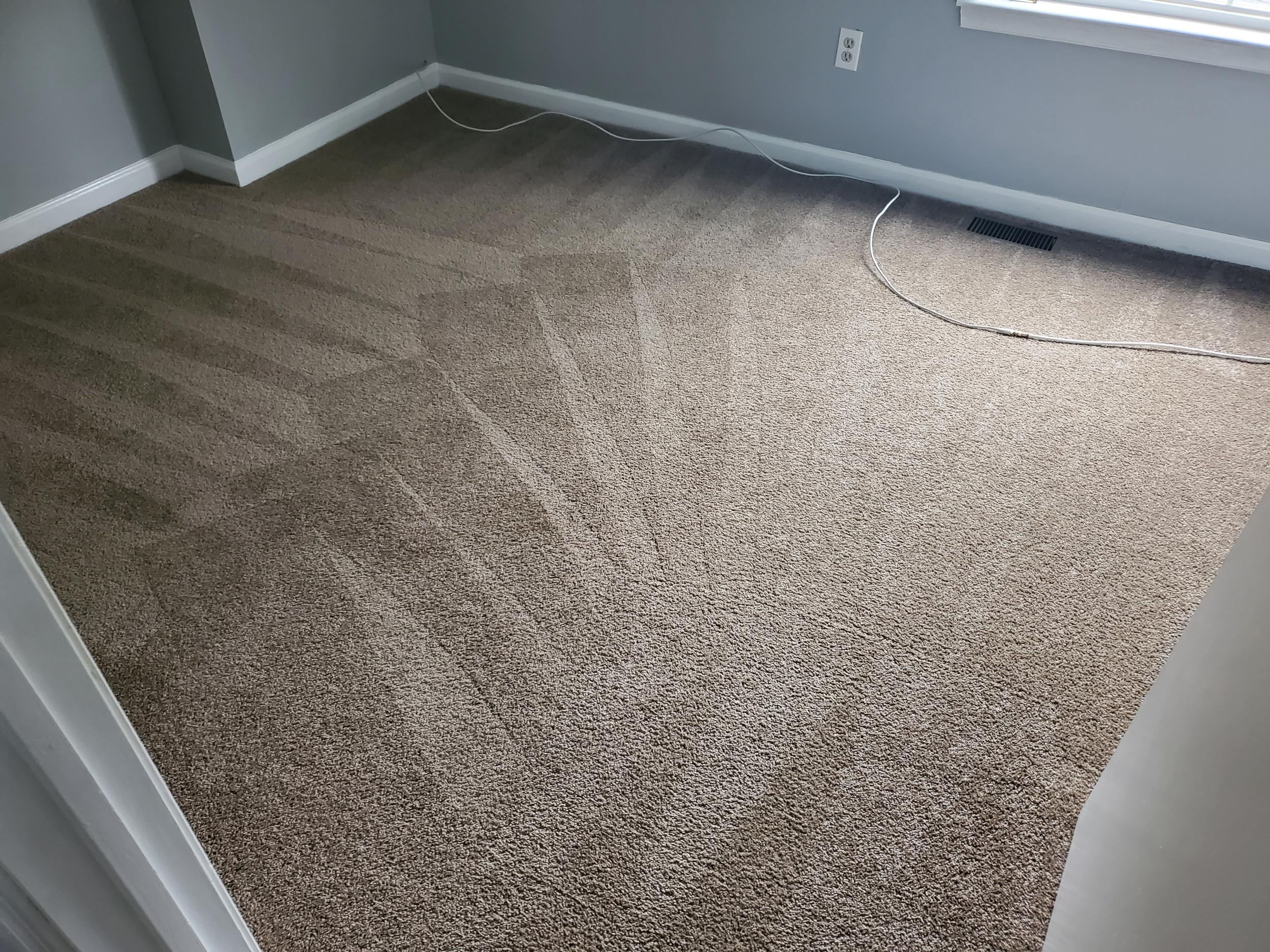 home carpet after it's been cleaned