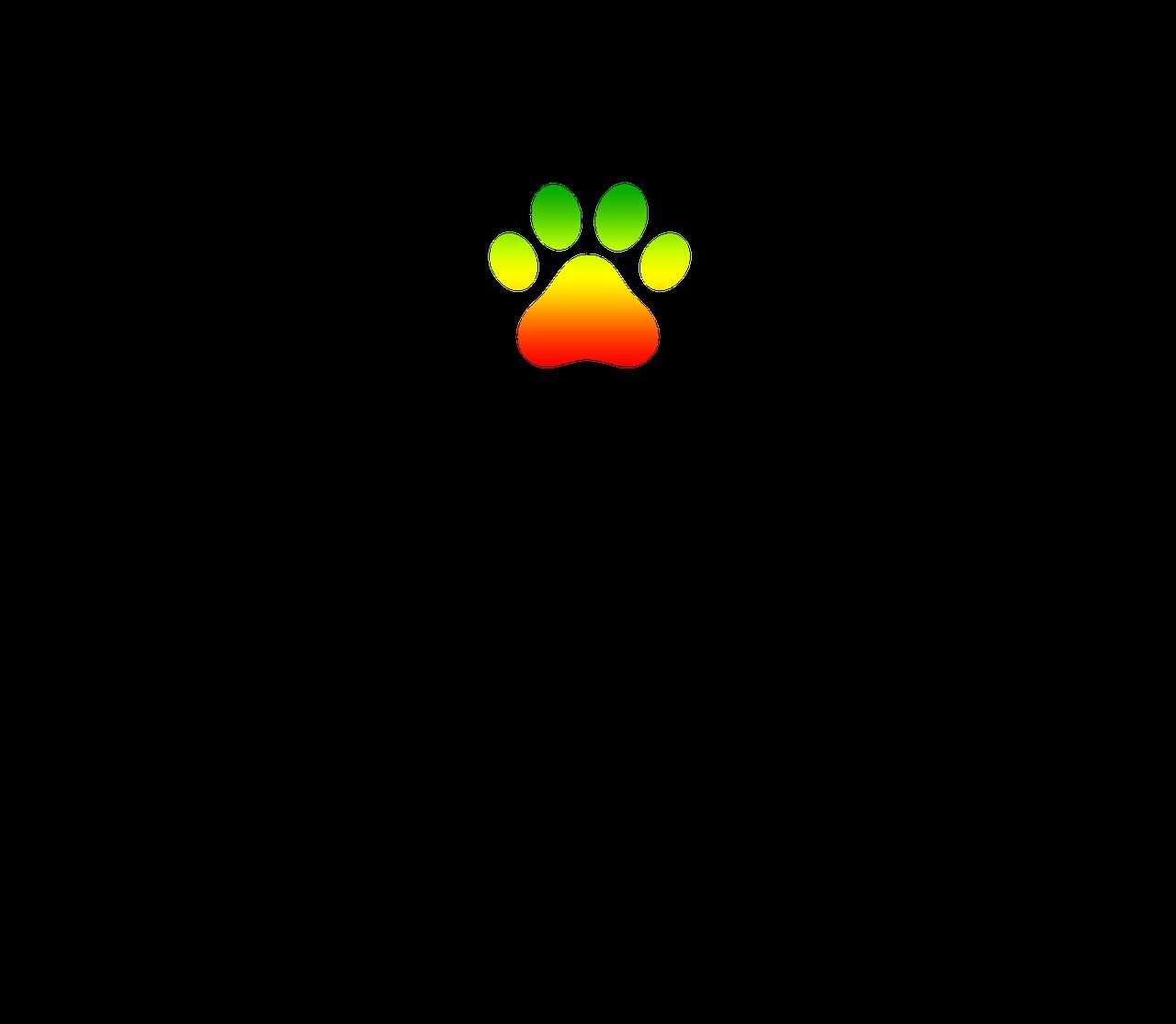 a35a32d0-e164-11e9-8f88-0242ac110002-wonders-logo-png.png