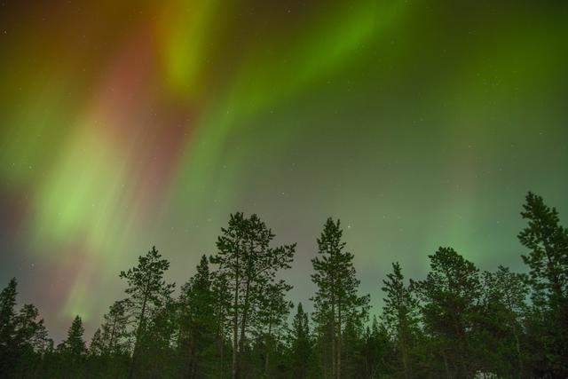 Green and red polar lights