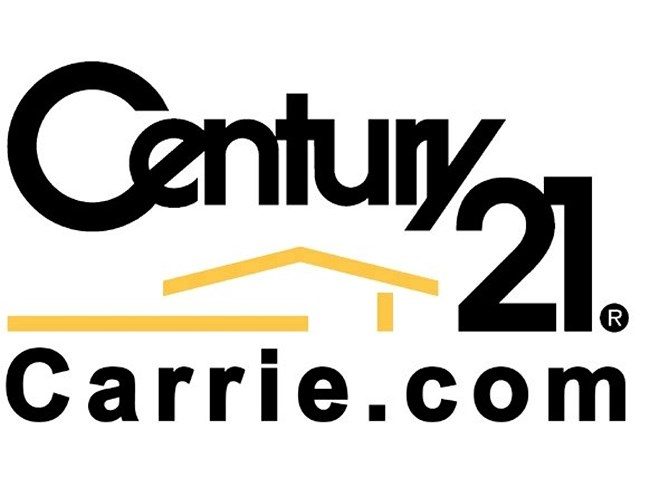 website-review-images/Cen21Logo.jpg