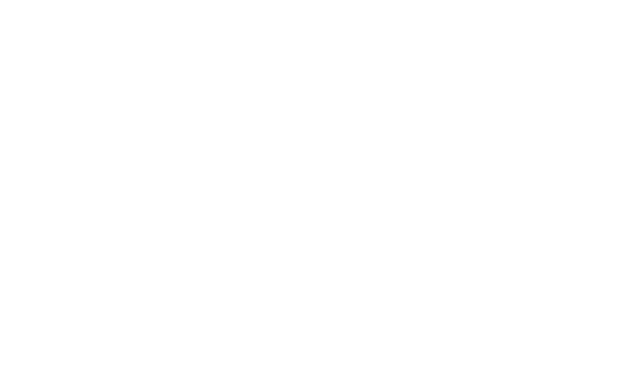 American Eagle Solutions