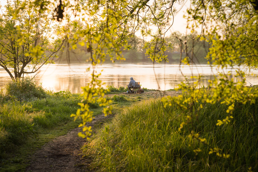 Visit_Sacramento_American_River_Discover_Park_Outdoors_22.jpg