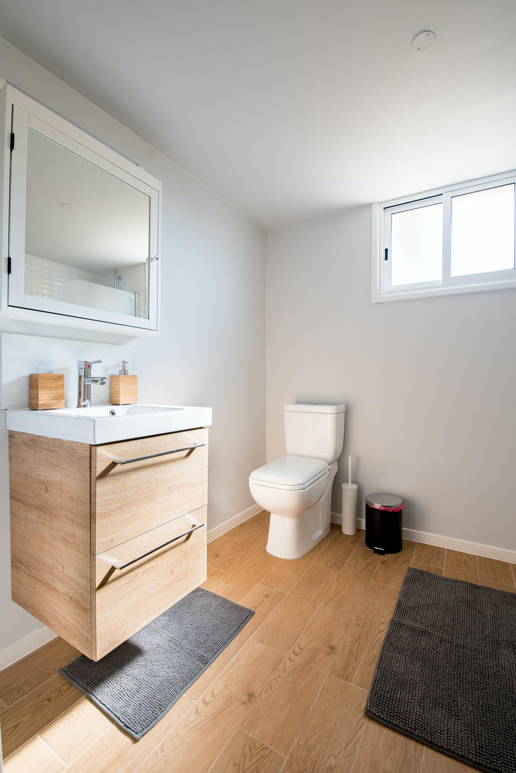 Vancouver toilet cleaning services.