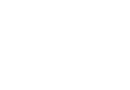 cruisewithaction.png