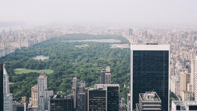 Central Park guided tour.
