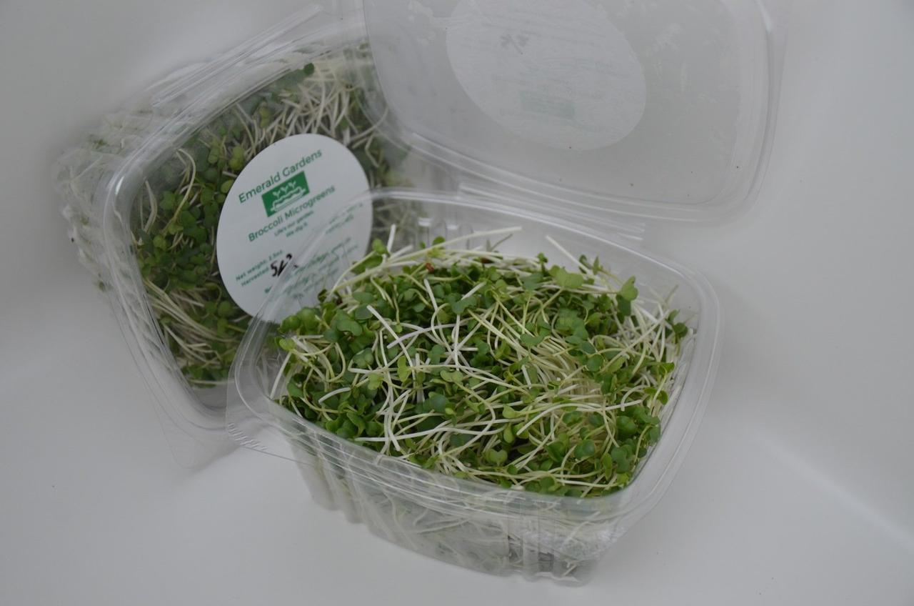 Broccoli Micros