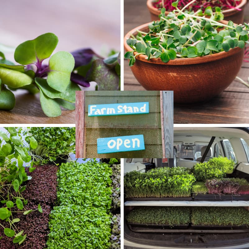 Online Farm Stand Free Delivery