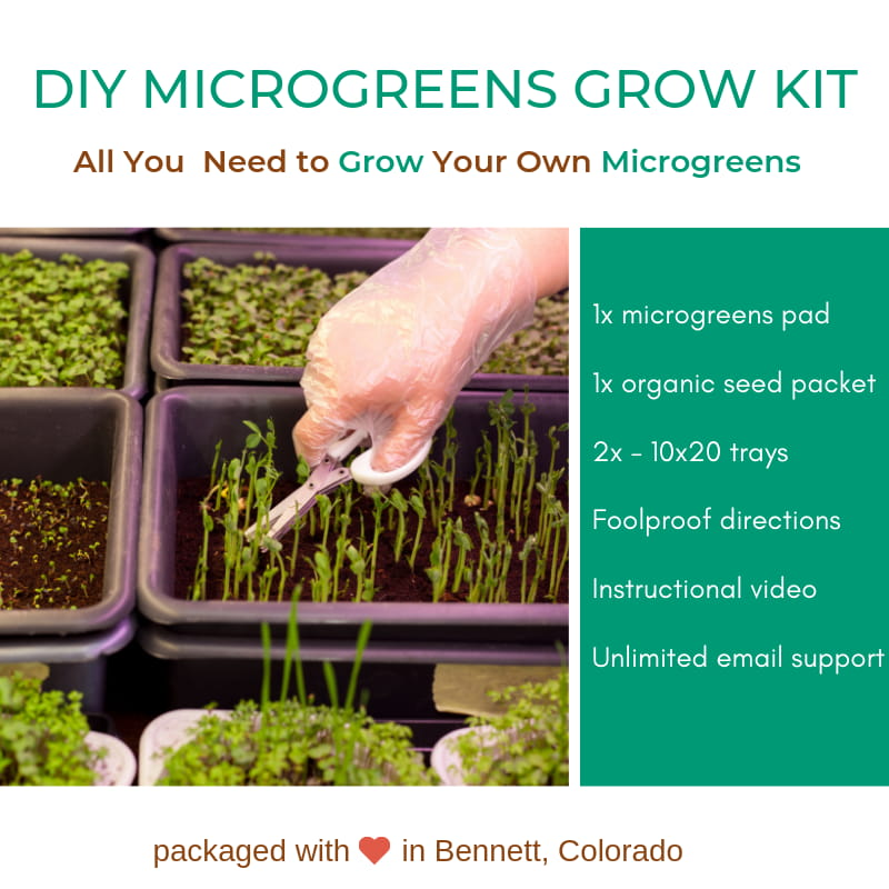 Order Your DIY Growing Kit