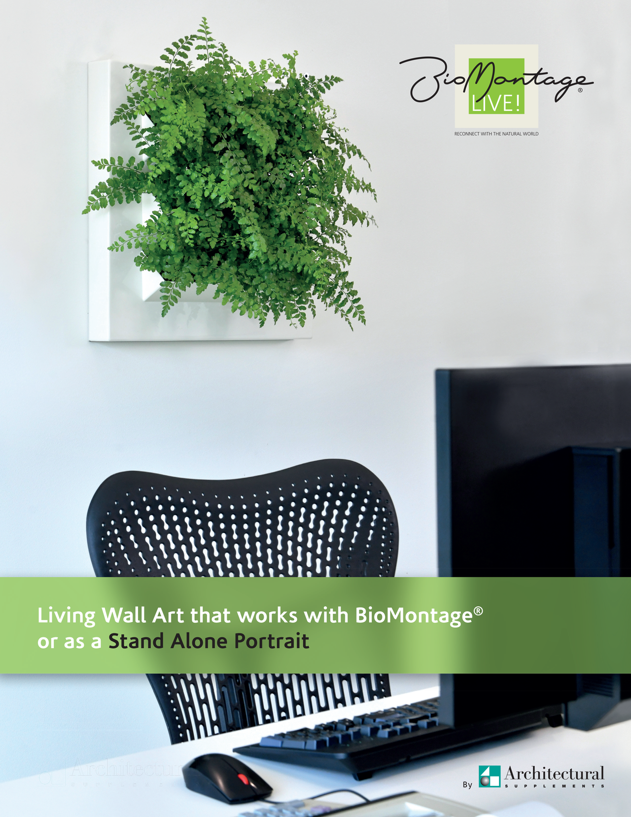 biomontage_live!_brochure-cover.png