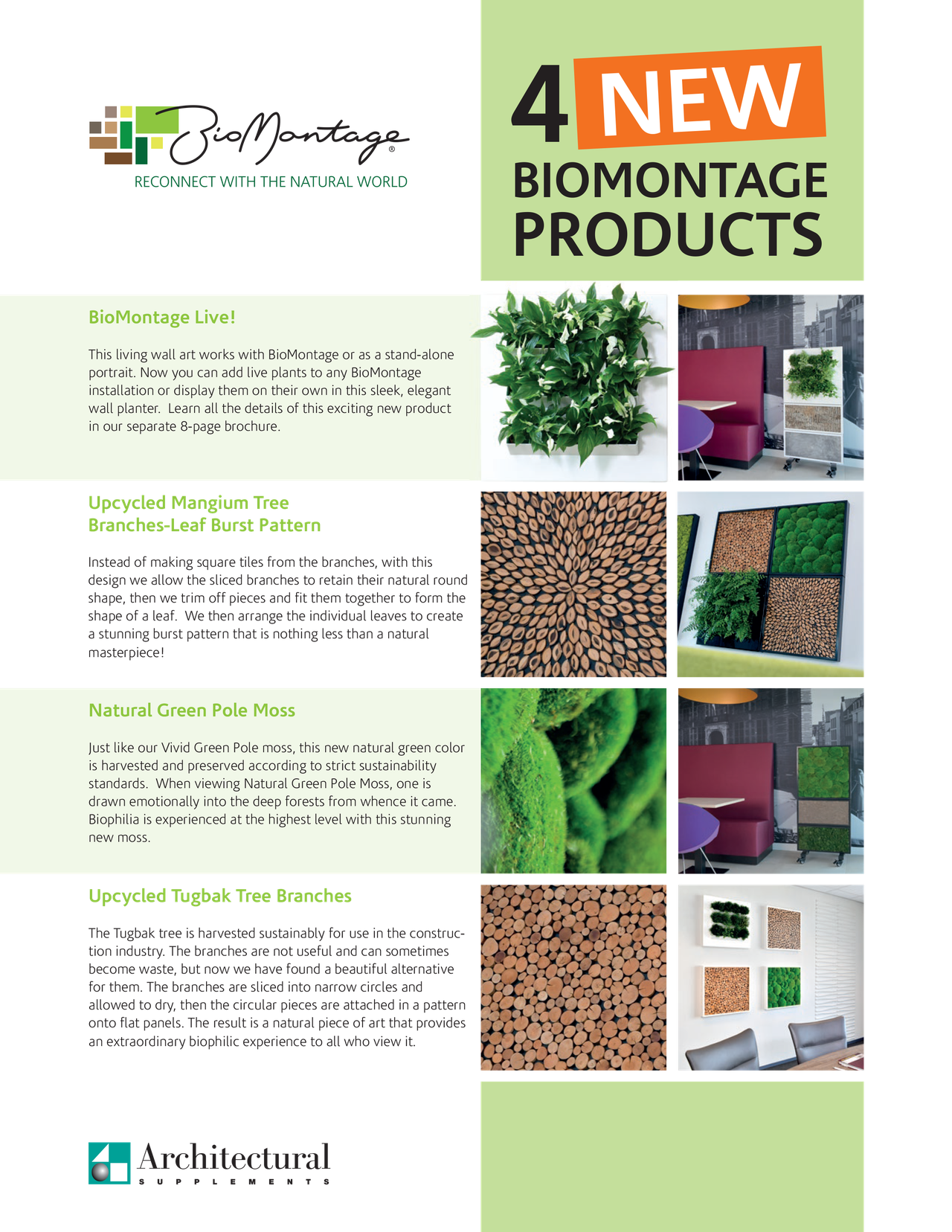 biomontage_4_flyer-cover.png