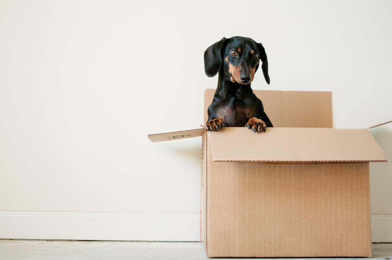 Move Out Tips for Apartment Managers