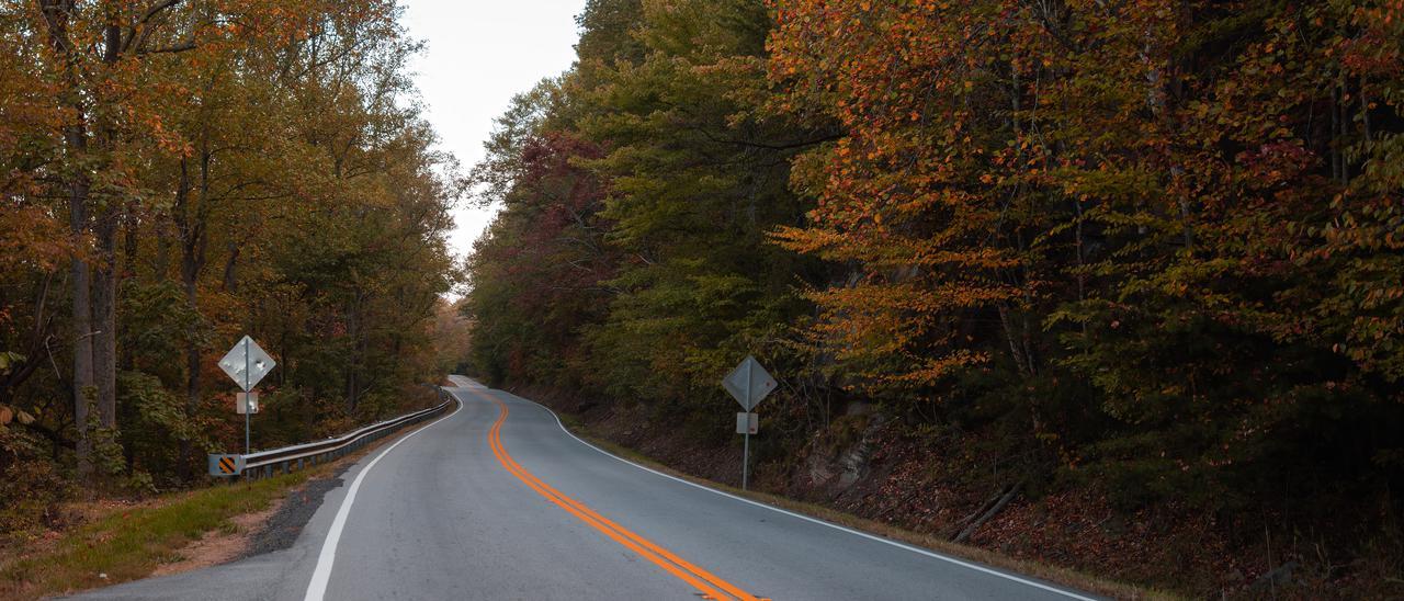 road-cloudland-canyon.jpg