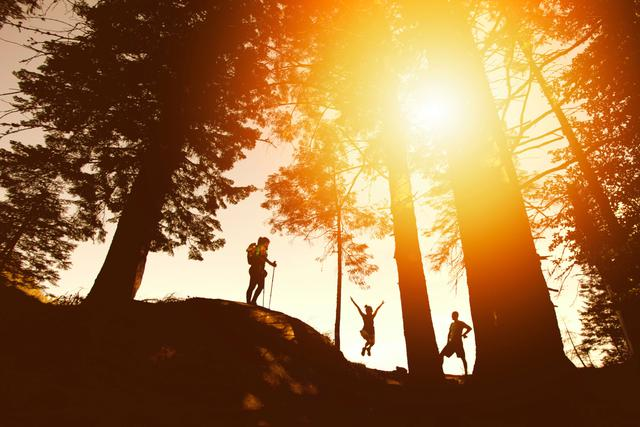 three people hiking through a forest at sunset
